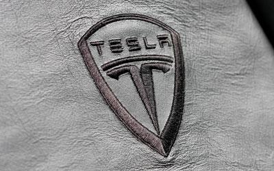 Telsa логотип